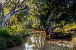 Barcoo River Tambo-1 (1024x681).jpg
