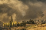 Rod Burgess. Lower Molonglo fog_smaller.JPG