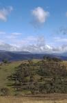 Julie Taylor - 3 - Urambi Hills_smaller.JPG