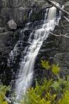 Mark S 005 Waterfall_smaller.JPG