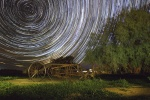 John Mitchell Star Trails _ harvester Grenfell NSW.JPG