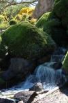 helen hall - 8 - Waterfall Japanese Gardens Cowra.jpeg