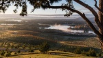 Julie Taylor - 4 - View from Dairy Farmers Hill - May 2020.jpeg