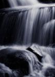 Rod_Burgess 06 Gibraltar Creek.jpeg
