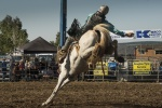 Qby rodeo 2018-101_small.JPG