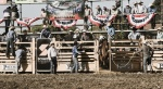 Qby rodeo 2018-107_small.JPG