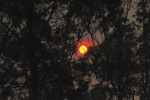 Smoke sunset_2.JPG