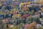 Autumn (1 of 2) (Large) (2)_2.JPG
