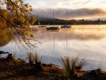 Autumn Morning, Lake Burley Griffin-2.jpg