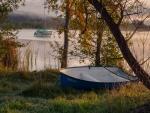 Autumn Morning, Lake Burley Griffin-3.jpg