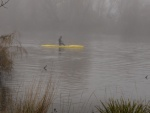 Brian Moir Foggy Molongolo Morning-3_smaller.JPG