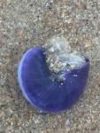 MariaShaw PurplePeriwinkle.jpg