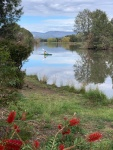 helen hall - 2 -Lake Tuggeranong.jpeg