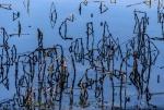 John Hamilton - 1 - Reflections_1.jpg