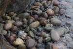 Rod_Burgess_04_rocks.jpg