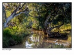 Barcoo River (1500x1125).jpg