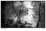 Near Fitzroy Falls with Stroke (1500x1000).jpg