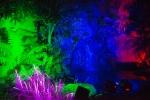 luminious-1-17 (1500x1001).jpg