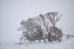 snowy mountains_NIK3824--smaller.JPG