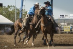 Qby rodeo 2018-102_small.JPG